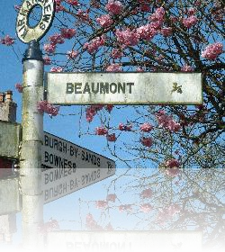 Images of Beaumont...