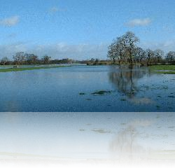 River Eden Flooded Meadows from Dollys Beck